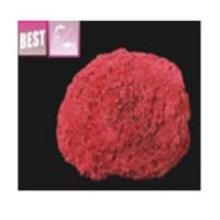 Xiongfa Kırmızı Mercan 15-25 Cm