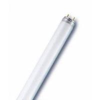 Roxin Floresan 10 Watt Pembe 35 Cm