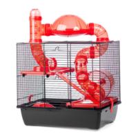 İnter-Zoo Rocky+Terrace Hamster Kafesi 42 X 29 X 58 cm