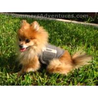 Thundershirt Sakinleştirici Köpek Giysisi Gri XS