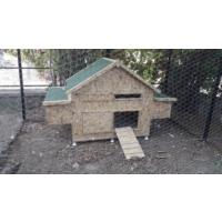 Akdeniz kafesçilik kuş kafes Kahverengi