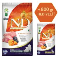 N&D Pumpkin Tahılsız Bal Kabaklı, Kuzu Etli Ve Yaban Mersinli Orta Ve Büyük Irk Yavru Köpek Maması 2.5Kg - 800 Gr