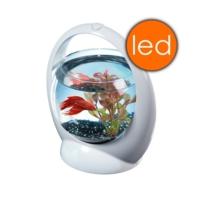 Tetra Betta Ring Led Işıklı Beta Akvaryumu 1,8Lt