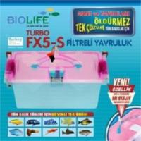 Biolife Turbo Fx5-S Yeni Son Versiyon Yavruluk
