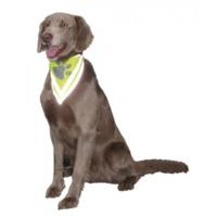 Nobby Safety Köpek Güvenlik Bandanası M-L