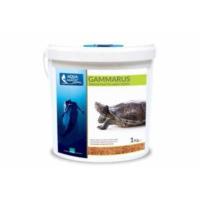 Aqua Magic Gammarus 1 Kg Kova