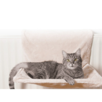 Pawıse Kedi Yatağı Radyatör İçin