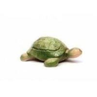 Sera Güner Sera mik R-68 Büyük Boy Kaplumbağa