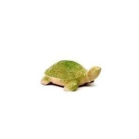 Sera Güner Sera mik R-69 Orta Boy Kaplumbağa