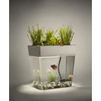 Aquagarden Ekolojik Akvaryum Standart Set