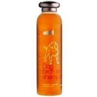 Green Fields Huş Ağaci Özlü Köpek Şampuani 200 Ml