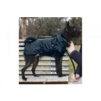 Köpek Yağmurluk (Montreal) 15 Cm