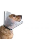 Bobo Köpek İçin Elizabeth Yakalık 10'' - 5405