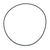 Fluval Fx5 Filtre İçin Filter Deckel O-Ring