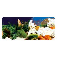 Chicos Akvaryum İçin Dekoratif Bitki-Mercan Plastik Poster 40 Cm