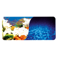 Chicos Akvaryum İçin Dekoratif Mercan-Deniz Plastik Poster 80 Cm