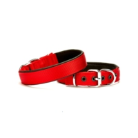 Doggie Dokuma Softlu Sade Boyun Tasması Kırmızı 2,5 X 50 cm