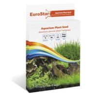 Eurostar Bitki Tohumu Eleocharis Parvula
