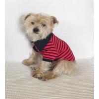 Kemique Kırmızı Siyah Çizgili - Polo Yaka Tişört - Summer Köpek Elbisesi