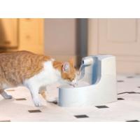 Drinkwell Mini Kedi ve Köpek Su Pınarı 1,2 lt