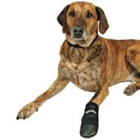 Trixie köpek patiği, XXXL, siyah Newfoundlander ve Saint Bernard