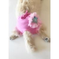 Kemique Pembe Dantelli Teddy Kemique'S Secret Köpek İç Çamaşırı Regl Külot Don