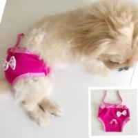 Kemique Pembeli Fiyonk Kemique'S Secret Köpek İç Çamaşırı Regl Külot Don
