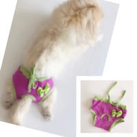 Kemique Eflatun Yeşil Kemique'S Secret Köpek İç Çamaşırı Regl Külot Don
