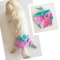 Kemique Pembe Yeşil Kurdelalı Kemique'S Secret Köpek İç Çamaşırı Regl Külot Don