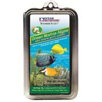 Ocean Nutrition Green Marine Algae - 30 Gr. Sarımsak Katkılı Deniz Yosunu