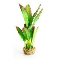İpek Akvaryum Bitkisi 20 Cm Yeşil