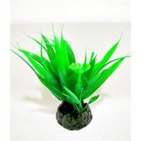 Plastik Demet Bitki 10 Cm