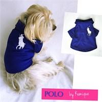 Polo By Kemique Tişört Mavi M
