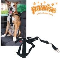 Pawise Emniyet Kemerli Köpek Tasması Medium