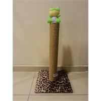 Kedi Tırmalama Tahtası - Oyuncaklı