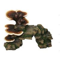 Chicos-Dekor Dekor Mantar Kaya (19,5X11x13)