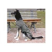 Köpek Yağmurluk (Montreal) 40 Cm