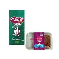 Alice Snob Kuru Kedi Maması 15kg alana Sokak Hayvanları Alice Beslenme Seti 125 Gr. bedava !
