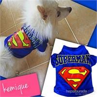 Kemique Superman Tişört L