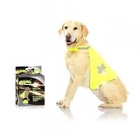 12002 Pawise Safety Vest Köpek Yeleği M