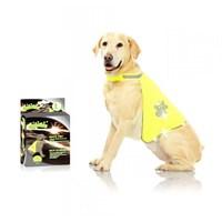 12003 Pawise Safety Vest Köpek Yeleği L