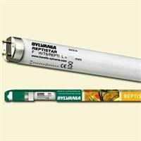 Sylvania Reptistar T8 Sürüngen Lambası 36 W