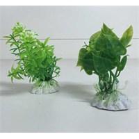 Akvaryum Ve Fanus İçin Küçük Plastik Bitki Pb023