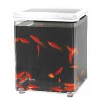 Aquasyncro Fish Home Akvaryum Beyaz 20 Cm X 20 Cm X 26 Cm
