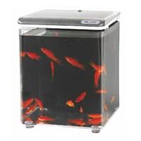 Aquasyncro Fish Home Akvaryum Gümüş 20 Cm X 20 Cm X 26 Cm