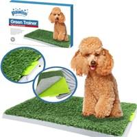 Pawise Köpek Çiş Eğitimi Yapay Çimli Tuvalet Kabı