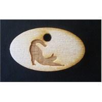 Oval Kedi Tasma İsimlik kk