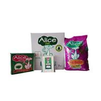 Alice Mini Paket 3