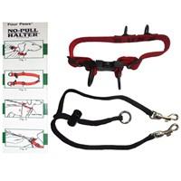 Four Paws Easy Walk Köpek Eğitim Tasması XL