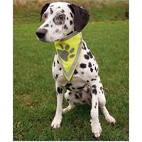 Fosforlu Köpek Bandanası Pati Desenli Xsmall 22x28cm